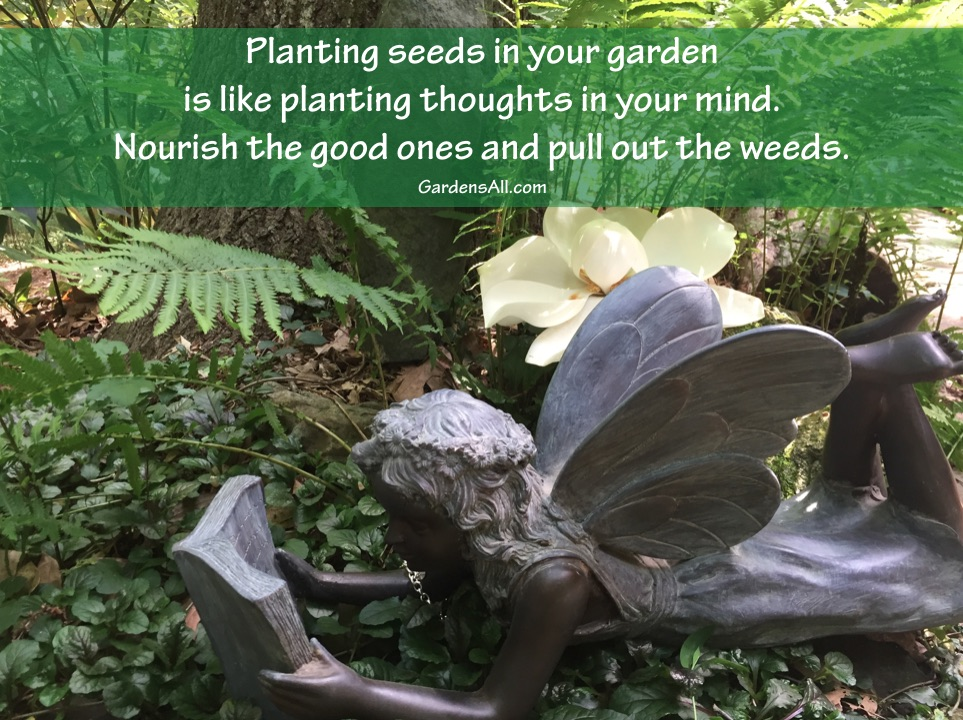 """""""Planting seeds in your garden is like planting thoughts in your mind. Nourish the good ones and pull out the weeds."""" ~LeAura Alderson#GardenQuotes #Inspirational #Funny #Signs #Wisdom #Short #Flower #Vegetable #Simple #Life #Fairy #Happy #Cute #Family #Sayings #Enchanted #Hilarious #Botanical #Growing #Zen #Rose #Spring #Herb #Aesthetic"""