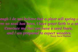 Have Faith and Expect Wonders