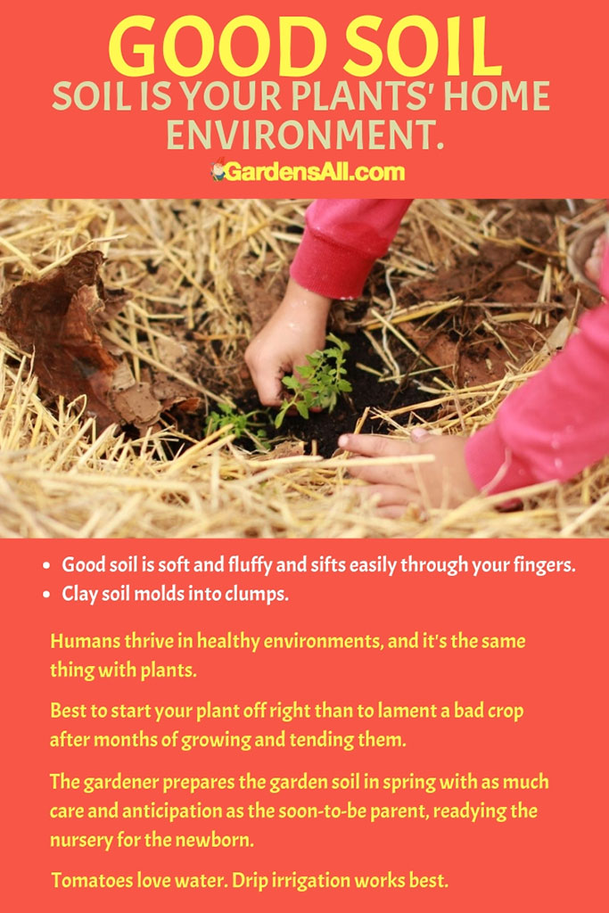 Good Soil is Your Plants' Home Environment