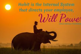 Habit Directs Will Power