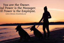 You are the Owner
