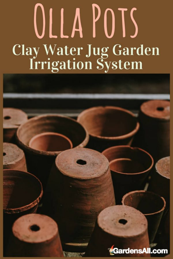 Olla Pots Are Clay Water Jug Garden Irrigation System