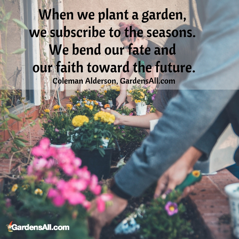 When we plant a garden, we subscribe to the seasons. We bend our fate and our faith toward the future. ~Coleman Alderson, GardensAll.com #Gardening #GadenIdeas #GardenArt #HomeAndGarden #Garden #GardenQuotes