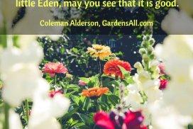 Your Garden Is Your Little Eden
