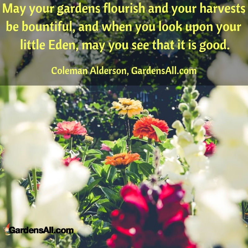 Your Garden Is Your Little Eden