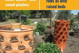 Plant Tower Pros And Cons