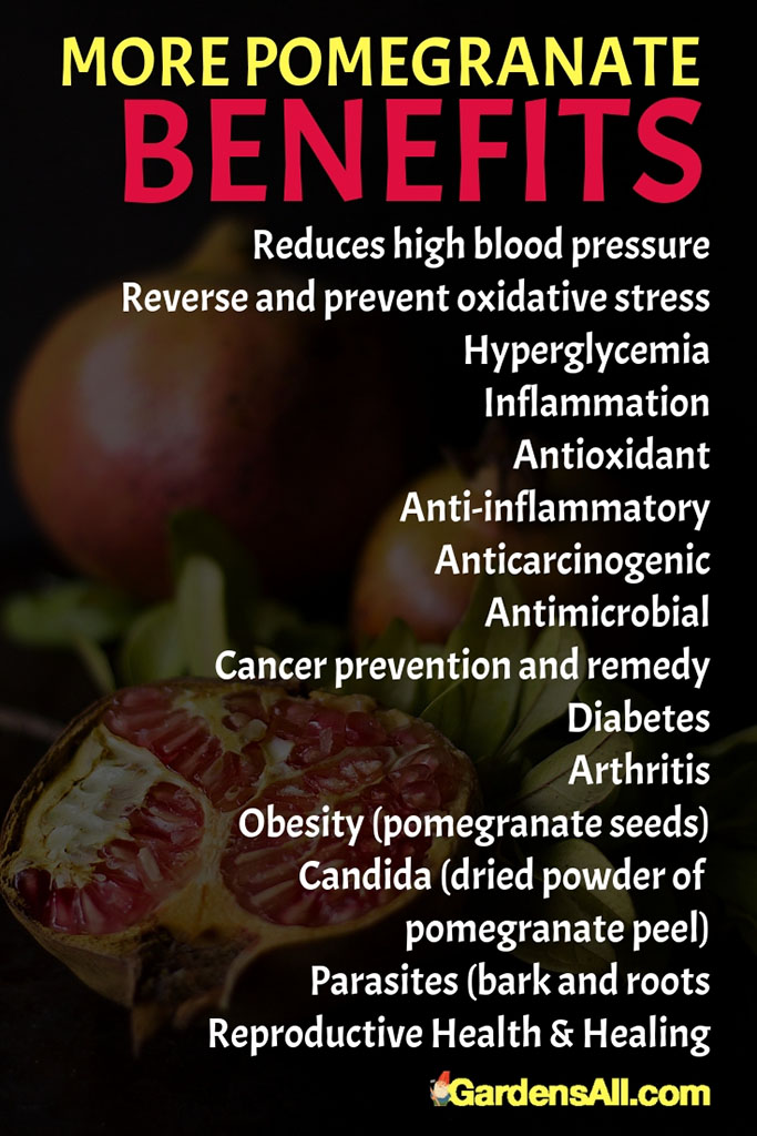 More Benefits Of Pomegranate