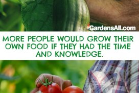 More People Would Grow Their Own Food