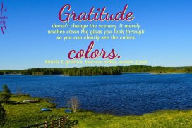 Gratitude doesn't change the scenery. It merely washes clean the glass you look through so you can clearly see the colors. ~Richelle E. Goodrich, American author, novelist, & poet #Gratitude #Mindset #Attitude #Healing #Positivity #Motivation #Inspiration #Quotes