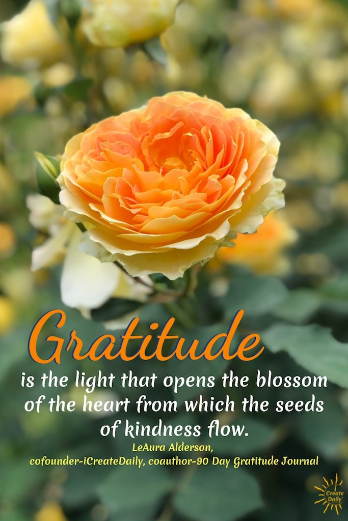 Gratitude is the light that opens the blossom of the heart from which the seeds of kindness flow. ~LeAura Alderson, cofounder-iCreateDaily, coauthor-90 Day Gratitude Journal #GratitudeQuote #KindnessQuote #HeartQuote #Kindness #KindHeart #Gratitude